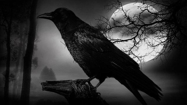 [OPINIÓN] Pájaro de mal agüero