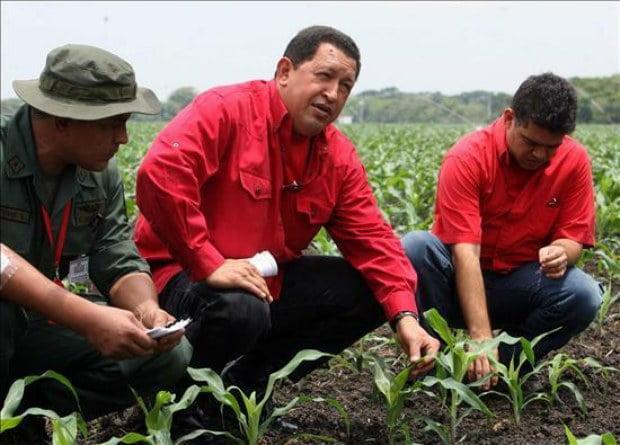 Chávez ¿Qué hacer?