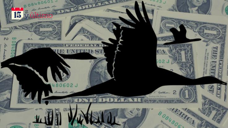 [OPINIÓN] Dolarización: ¿el cisne negro?