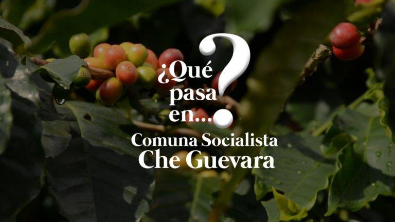[VÍDEO] ¿Qué pasa en la Comuna Che Guevara en Mérida?