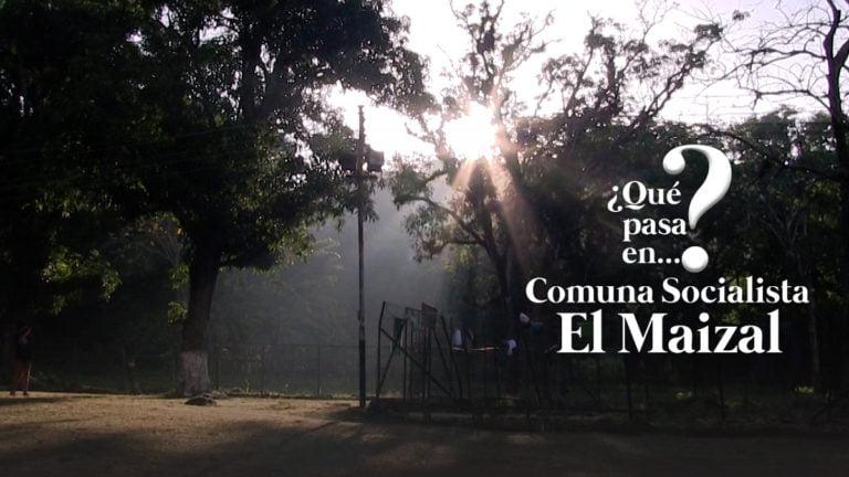 [VIDEO] ¿Qué pasa en la Comuna El Maizal en Lara?