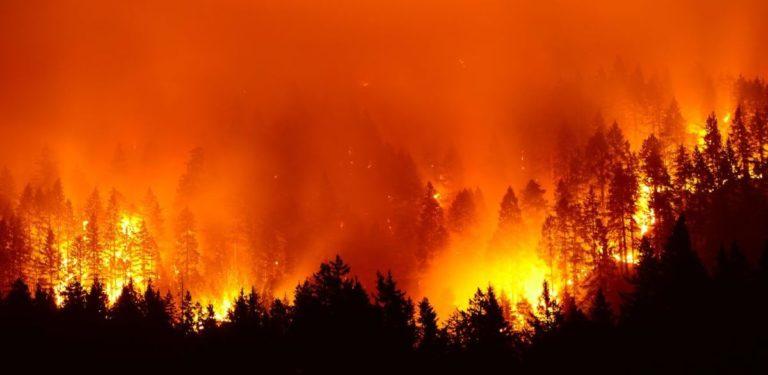 [COLUMNA PRESTES] Las llamas ardientes del capitalismo en la Amazonía