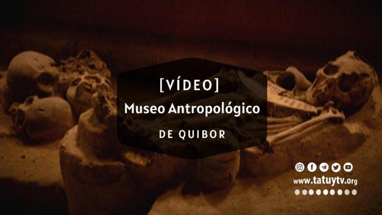 [VÍDEO] ¿Qué Pasa en el Museo Antropológico Francisco Tamayo en Lara?