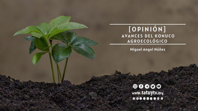 [OPINIÓN] Avances del Konuco Agroecológico