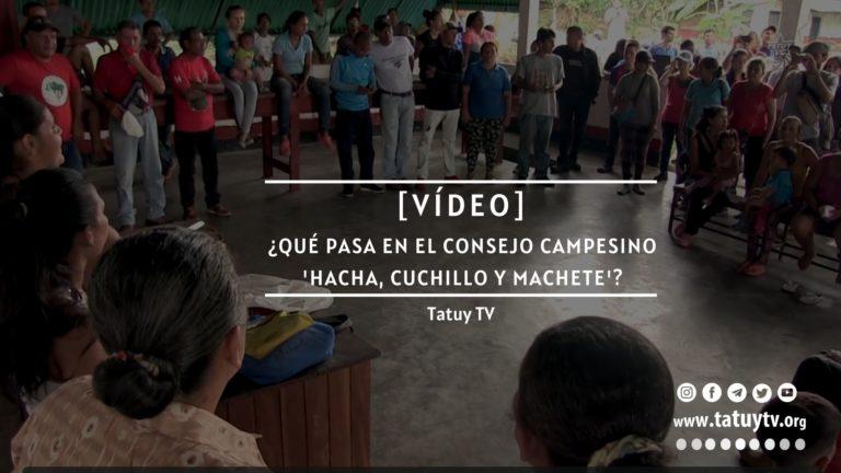 [VÍDEO] ¿Qué pasa en el Consejo Campesino Hacha, Cuchillo y Machete en Mérida?