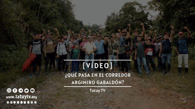 [VÍDEO] ¿Qué pasa en el Corredor Argimiro Gabaldón en Lara?
