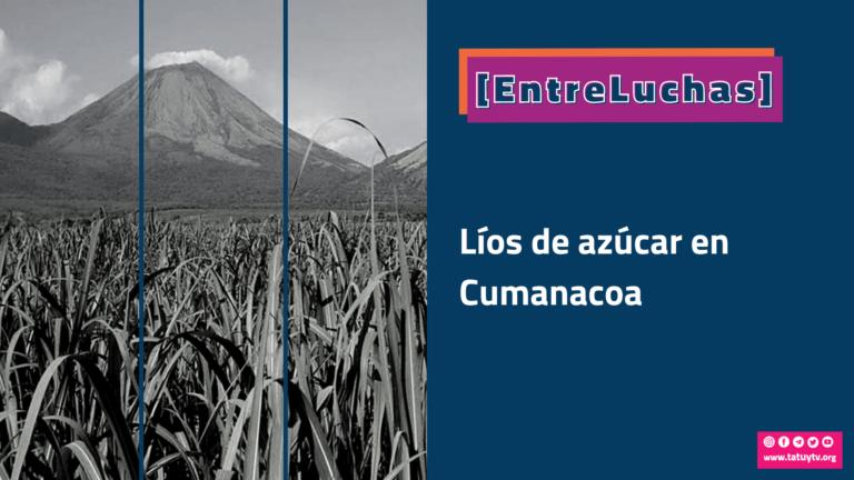 [ENTRELUCHAS] Líos de azúcar en Cumanacoa
