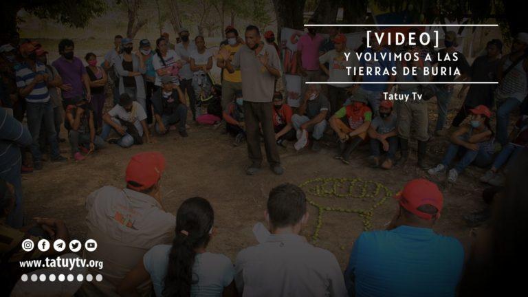 [VIDEO] ¿Qué pasa en las tierras de la Comuna «Negro Miguel» en Lara?