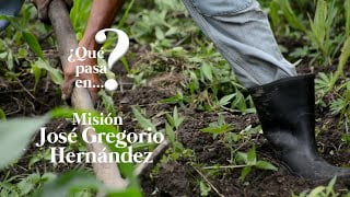 ¿Qué pasa en la Misión José Gregorio Hernández en Mérida?